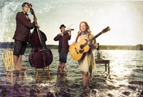 The Blackberry Bushes Stringband