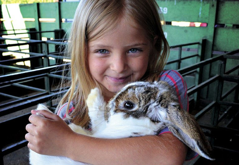 Hood River County youngsters gathered at the county fairgrounds in Odell on Saturday for the Small Animal Pre-Fair. Ava Jones, 6, of Parkdale, holds her bunny, Peter, which she will be showing this year.