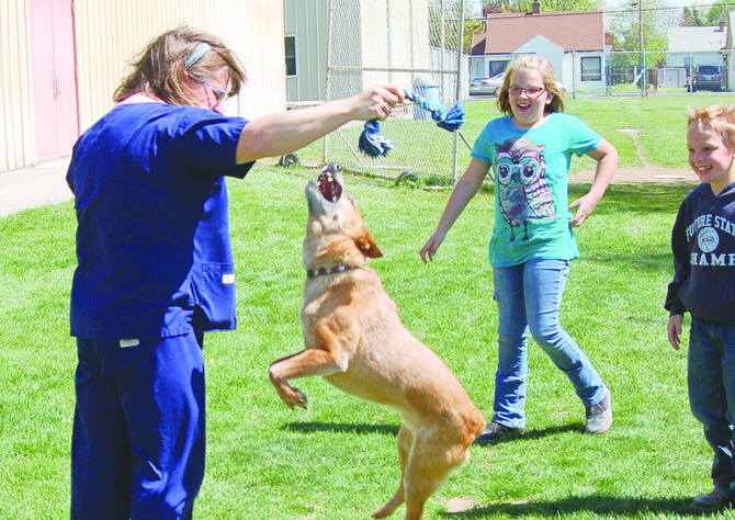 Reddy shows off his jumping skills at Sunnyside Christian School. Heidi Faith of Pet Health Clinic shows students how she is training Reddy, who was a rescue dog she got from a shelter.