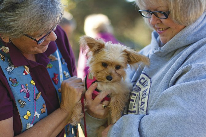 """St. Thomas Episcopal Church Vicar Elizabeth Morse greets Mitzi and her owner, Jo Martin, at Saturday's """"Blessing of the Animals,"""" an annual event at the Dallas church. Saturday's blessing drew nine dogs and four cats accompanied by 15 humans.  The event carries on the tradition  of St. Francis, who believed in honoring all nature, including animals. """"We bless them because they are our friends, and they are holy"""" Morse said."""