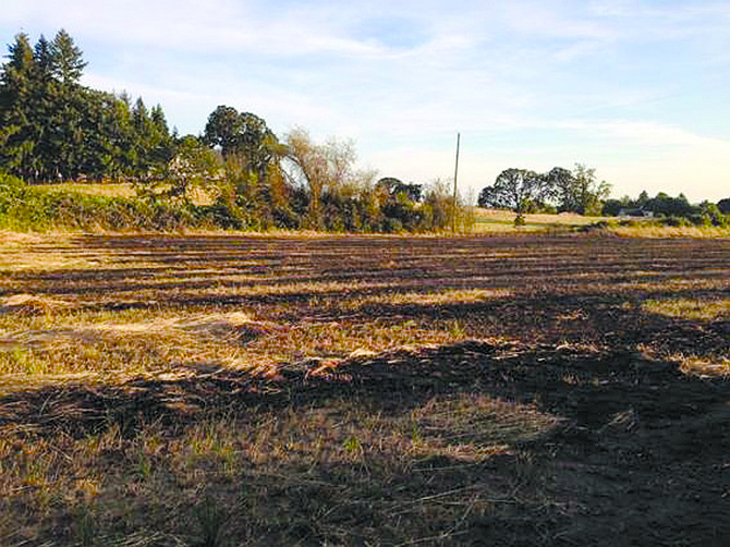 A grass fire burned six acres on Tuesday evening.