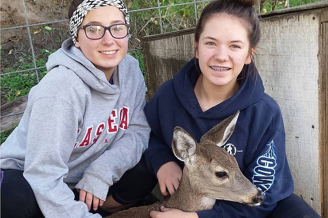 """Contributed photo / Shandra Chandler Paige Layman and Cassie Chandler helped save """"Bucky"""" the deer."""