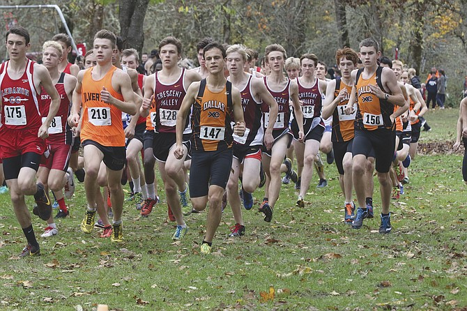 Trevor Cross, center, finished second at districts on Oct. 26.