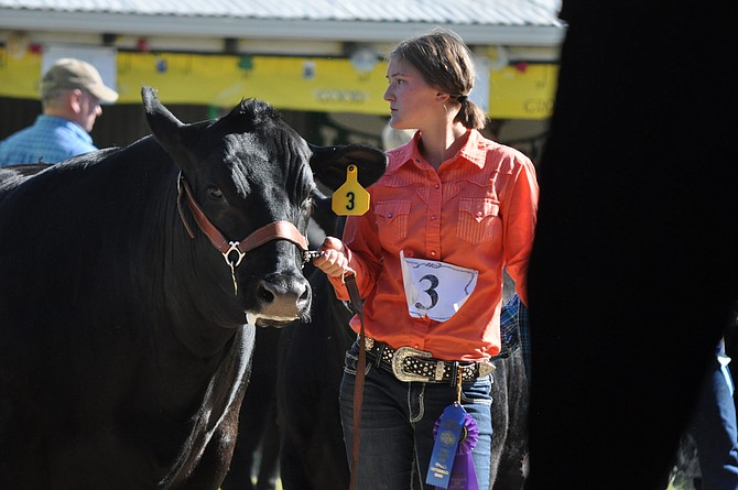 Waiting her turn to show her steer at Saturday's 4-H/FFA Livestock Sale was Halle Klapprich of Cottonwood.