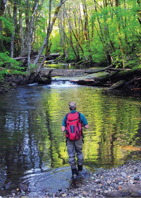 Salmon surveying: At the headwaters of the West Fork, Ryan Gerstenberger, Confederated Tribes of Warm Spring fish biologist, walks upstream looking for signs of spring chinook salmon spawning. On this day he located 16 new spawning nests, called redds, 11 carcasses and 15 live chinook in about a mile stretch of the river. See the Sept. 12 Kaleidoscope, page B1, for the story.