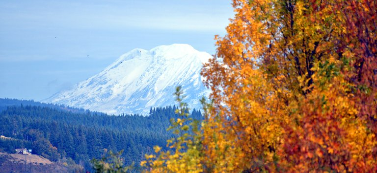 Fresh snow on Adams provides a nice backdrop for fall foliage and is a reminder that our amazing Indian summer is quickly coming to an end.