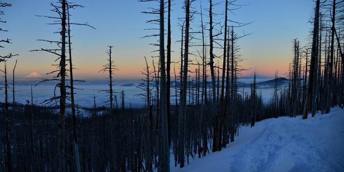 Above the clouds on a crisp, clear evening this week, as seen here looking north at Mount Adams from the Tilly Jane ski trail near Cooper Spur.