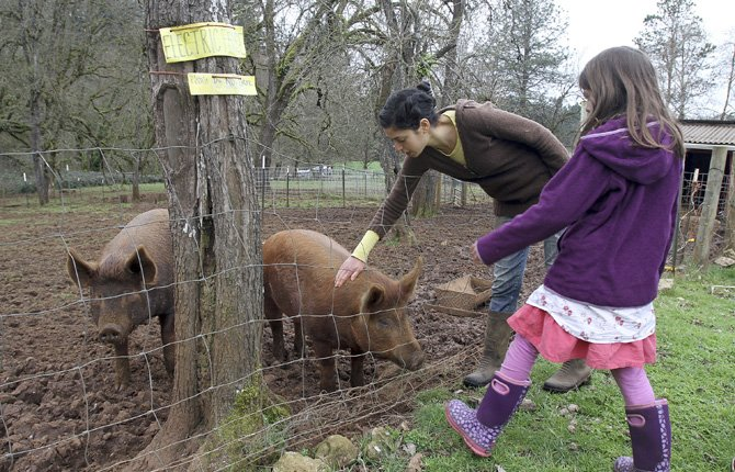 Rebecca Zimbel, and Olive Siegel, 8, pet the pigs while giving a tour of the GeerCrest Farm, between Silverton and Salem on March 10. For the past several months, GeerCrest Farm has been hosting open houses on the second Sunday of the month, allowing visitors to get an intimate look at life on the farm.