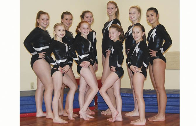 Riverside Gymnastics' Optionals Team had a strong campaign this spring season, capping their efforts with two state champions and numerous top five performances,   from left, front row, Elena Cardosi, Emma Smith, Courtney Hert and Hannah Caracciolo. Back row left to right, Bailey Coyner, Sammy Minnick, Cedar Wiley, Hannah Hinshaw, Taylor Sugg and Audrey Hinatsu.