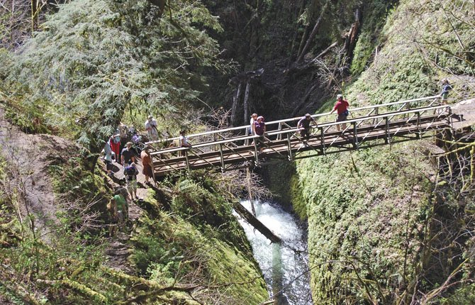 A FOOTBRIDGE passes over Oneonta Creek in one of three family-friendly hikes recommended for Memorial Day Weekend.