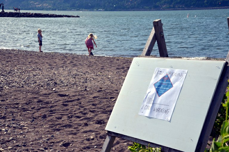 Event site signs Thursday evening cautioned beach users of unsafe E.coli levels found in the area.