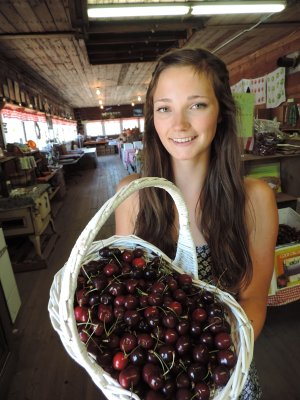 .Maddi Perry of Cody Farms in Odell holds a basket of the family's finest Bing cherries, one of many varieties of the mid summer fruit celebrated this weekend through the Fruit Loop.