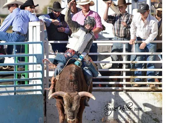 "BULL RIDER Ronnie Webber, a 2008 The Dalles Wahtonka High School graduate, takes his turn on the back of a bull in a recent rodeo. Coming off a big win last weekend at the 48th annual Fort Dalles Days ""Rough and Wild"" Rodeo at Milt Tumilson Arena, Webber has won three of five races for the 2013 campaign.     	                   Contributed photo"