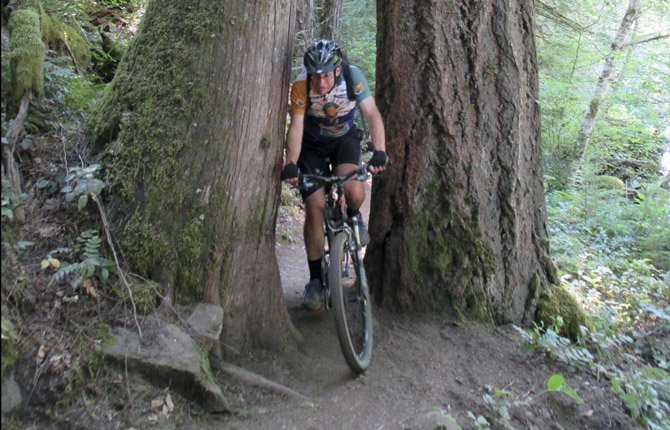 Dustin Gouker, of Bend, rides between two big trees along the McKenzie River Trail in McKenzie Bridge. The 26½-mile long McKenzie River National Recreation Trail, even with 1,600 feet of descent, is a grind of a ride.