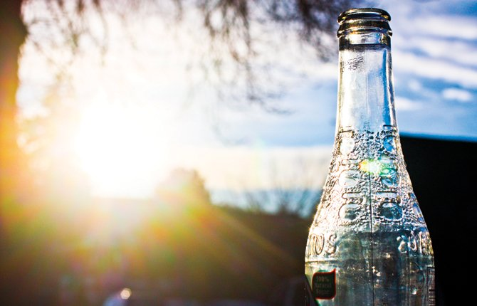 Ross Kohl, 16, submitted this sunlit still life for The Chronicle's youth summer photo contest.