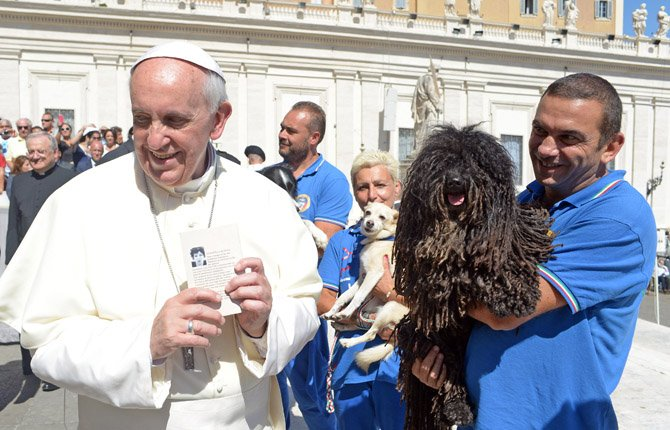 IN THIS PHOTO provided by the Vatican newspaper L'Osservatore Romano, Pope Francis is shown a dog by a member of the Federazione Italiana Sport Cinofili (Italian Federation of Canine' Sports), following his weekly general audience at the Vatican, Wednesday, Sept. 18, 2013.