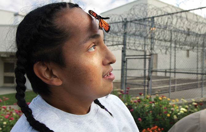 A monarch butterfly lands on Alex Littlebear at the Washington State Penitentiary in Walla Walla, Wash., Monday, Sept. 23, 2013. Littlebear and a handful of other inmates, nicknamed the Butterfly Wranglers, were releasing dozens of the colorful insects they had raised from eggs this year. About 30 inmates are part of a monarch rearing and tagging project to help scientists track butterfly migration patterns.