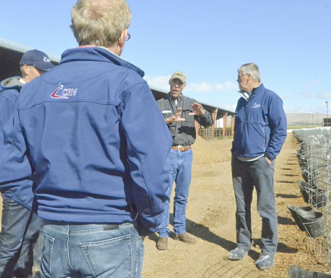 Jeff Bosma of J&J Bosma Dairy near Outlook explains local dairy practices to a group of Dutch dairymen visiting his farm yesterday.