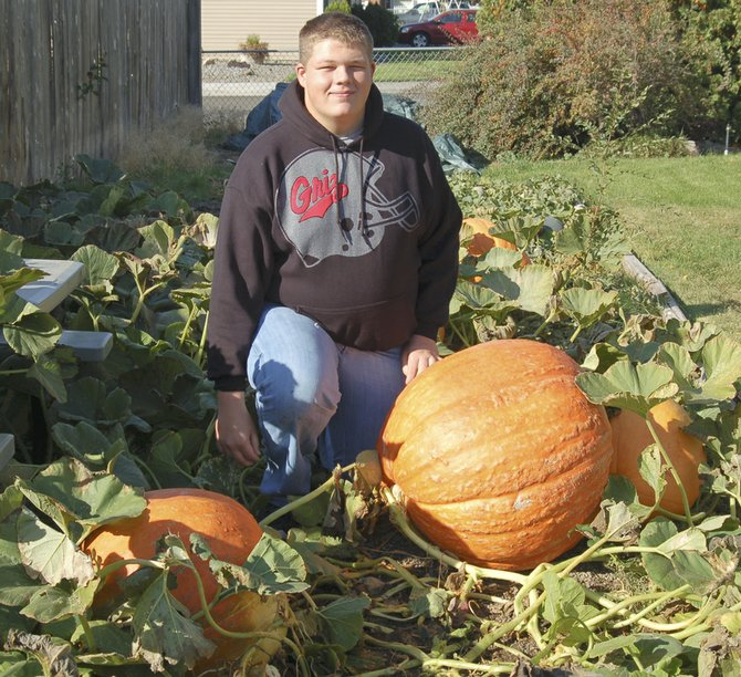 Zackary Spidle of Sunnyside kneels next to one of the gigantic pumpkins he raised. Spidle said he didn't do anything special to the plants, which grew from seeds bought at Walmart.