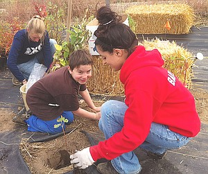 Young Laith Wajeeh helps a Sunnyside High School volunteer with the planting of wild golden current seedlings, which will eventually become a habitat at his parents' Heavenly Hills Harvest Farm.