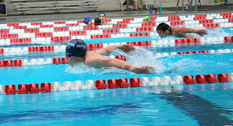 CHAD KLASS on his way to a 100m butterfly win last weekend.