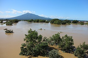 The Iwaki River (above) swelled to within inch-es of breaching its floodbanks, which would have been catastrophic for the small town of Tsuruta