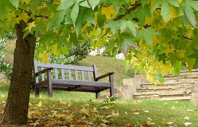 Gifts For The Gardener Can Include Garden Benches, Statuary, Birdbaths,  Books And Tools