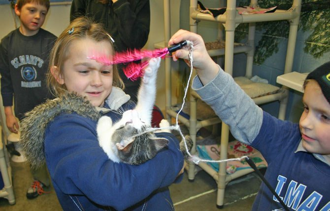 Shaela Bradley, second grade, and Vincent Raschio, kindergarten, play with a kitten at Home at Last animal shelter in The Dalles on Dec. 12 as a part of St. Mary's school-wide monthly community service program.