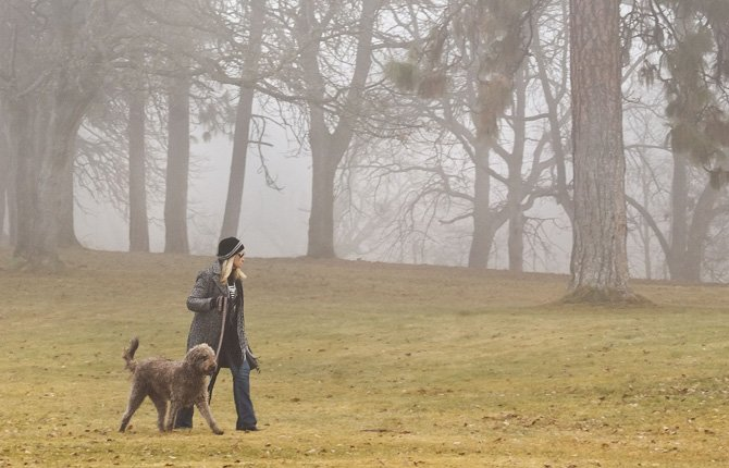 SHERI TUTTLE walks her dog Carly, a labradoodle, through dense fog at Sorosis Park Thursday afternoon. Freezing fog and otherwise clear skies are predicted through the weekend.