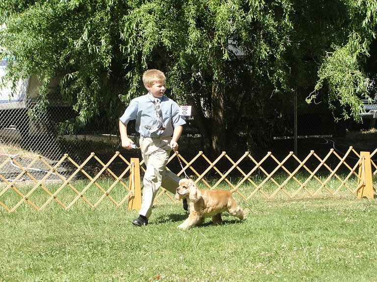 Quinton Durham exhibits his canine partner at the Hood River County Fairgrounds.