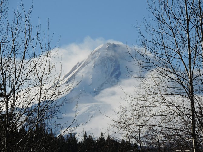MOUNT HOOD stands tall in this picture taken near the Polallie Creek Trailhead off Highway 35. The Hood River County Commission recently rejected a letter of support for designating forestlands in the vicinity of the creek and other areas in the county as wilderness.