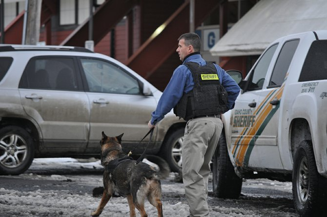 An unidentified Lewis County Sheriff's Office deputy deploys a K-9 dog to assist in the facility search of Grangeville High School during Monday afternoon's lockdown.