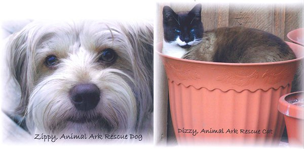 Mary Ann Davidson's cat and dog, shown here, were both Animal Ark rescues.