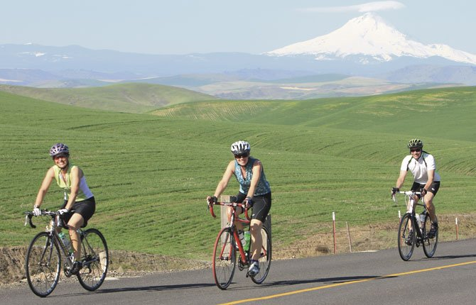 RIDERS from an earlier Cherry of a Ride pass through a scenic landscape with Mt. Hood in the background.