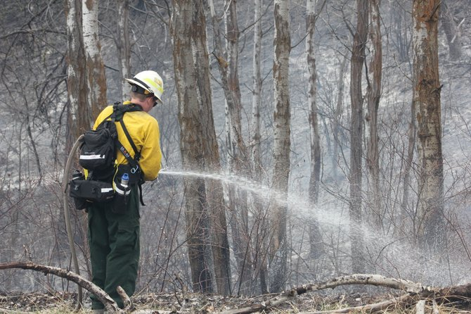 A state Department of Natural Resources fireman waters down a smoldering grove Monday along North Pine Creek Road.