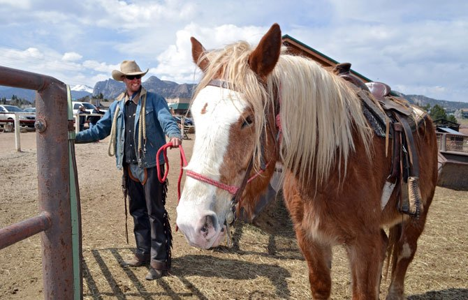 wrangler Kyle Rood leads Joker, a Belgian draft horse, for a ride at Sombrero Ranches riding stables in Estes Park, Colo. on April 21. The outfit uses draft horses along with quarter horses for tourists. The bigger horses are better able to handle the mountainous terrain as well as heavy riders.