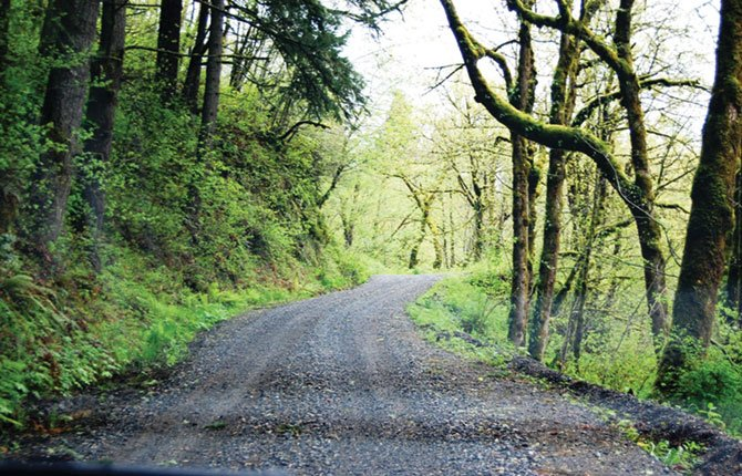 SKIP AND Jan Tschanz are on a quest to reach Upper Bridal Veils Falls in the gorge and enjoying scenic vistas along the way. Pictured above is Palmer Road they believe will lead them to the right trail.