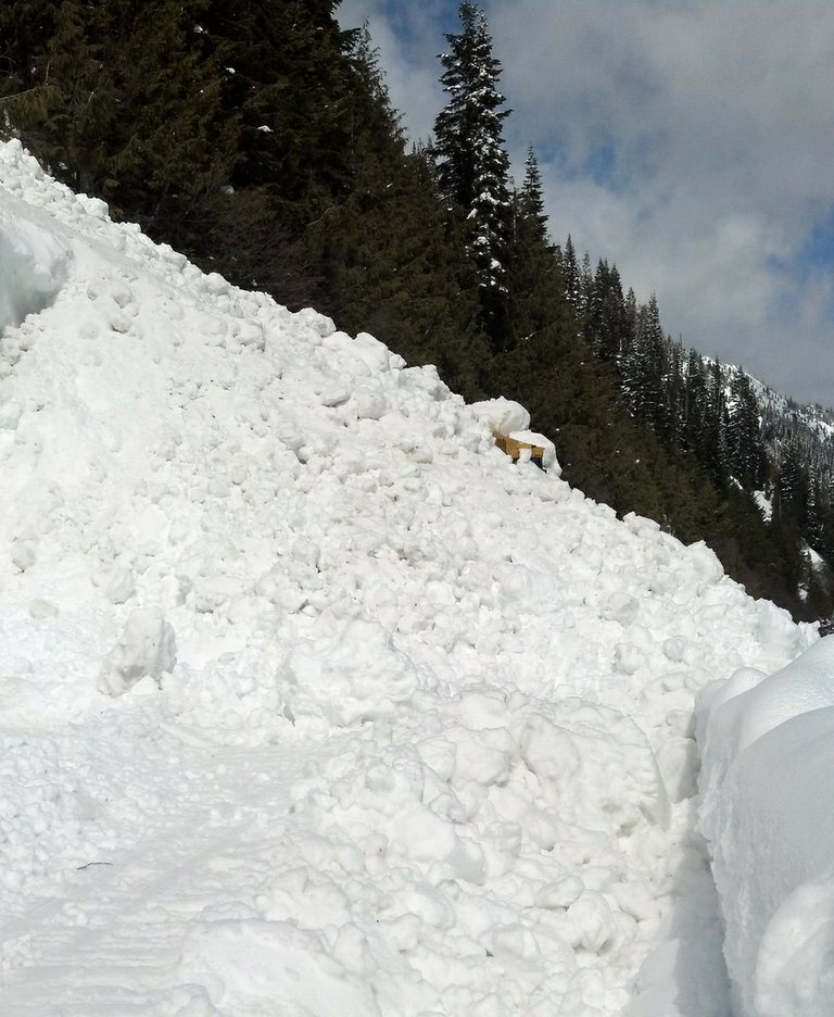 A state Department of Transportation employee and his bulldozer were buried Monday while trying to clear Chinook Pass, on state Highway 410 near Mount Rainier.