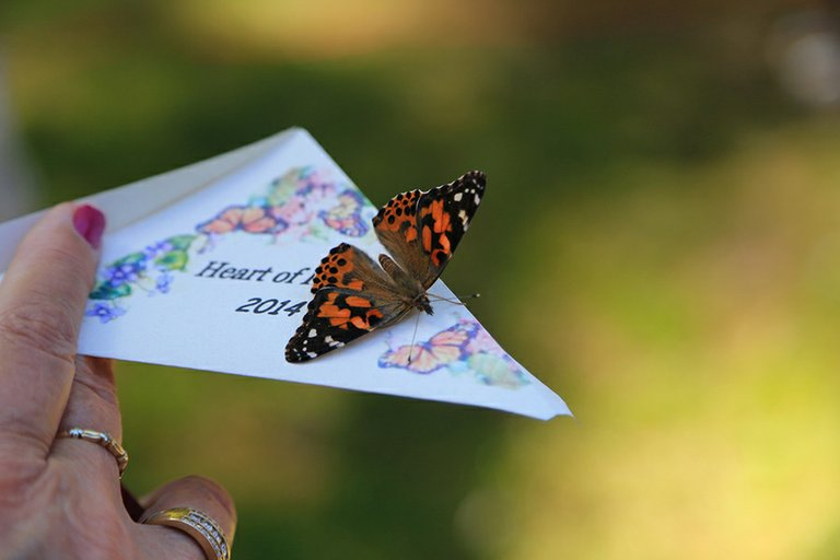 Hospice supporters, families and staff gathered in Jackson Park June 7 for the sixth-annual Heart of Hospice butterfly release, something that has become a Hood River tradition.