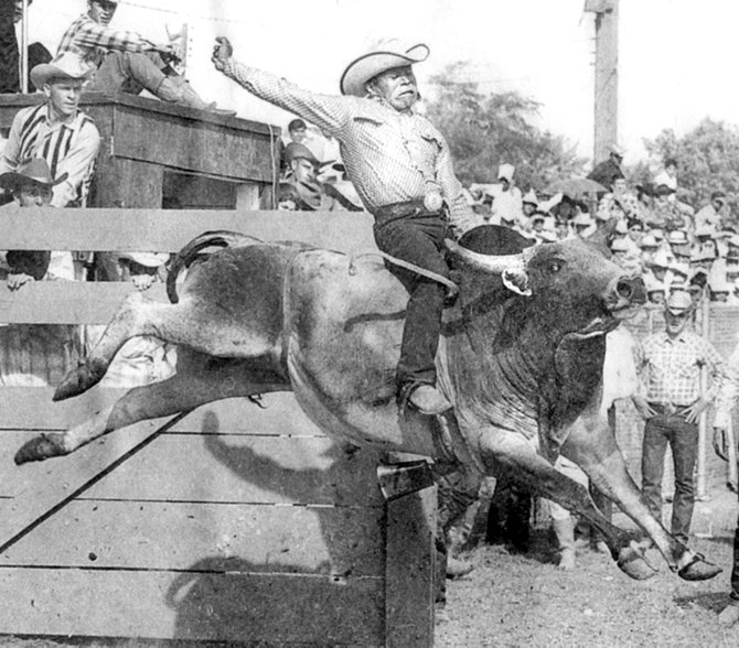 A historic photo of Larry Condon riding a bull.