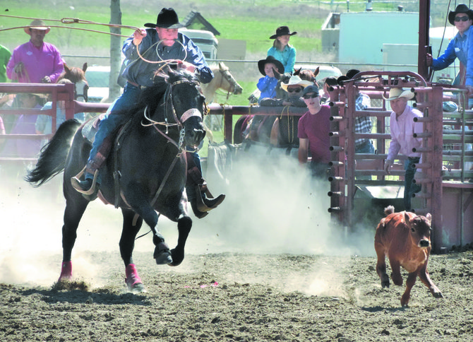Chance Stucker, of Tonasket, lassos a calf in 21.75 seconds during the senior boy's calf roping at the Tonasket Junior Rodeo on Sunday.