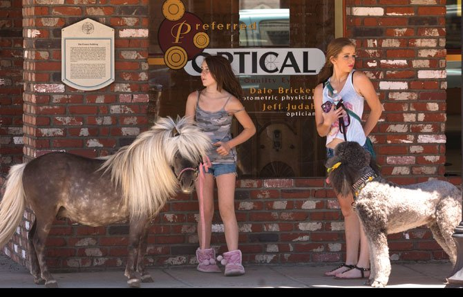 Angellica LeMieux, 12, with her pony Smokey and Lacey Nails, 15, with her poodle Nails, pause in the shade of downtown The Dalles. The tiny pony and the huge dog garnered plenty of smiles and waves as they walked through downtown Friday, June 20.