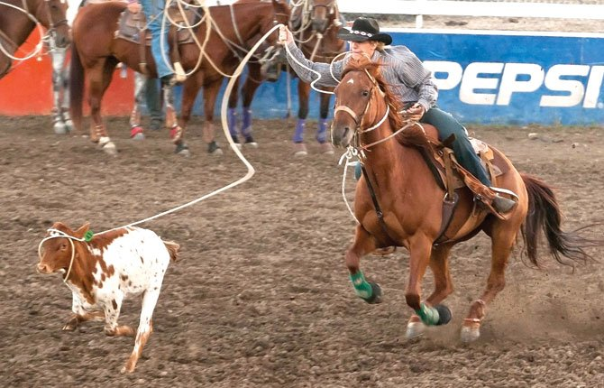 Logan Siebert, of Goldendale, Wash., tries to slip his loop over the calf's head during tie down roping competition at Fort Dalles Days Rodeo Wednesday night at Milt Tumilson Arena in The Dalles. Kyle Sloan, of Ellensburg, Wash., scored a time of 9.9 seconds to lead the way through one day of competition.