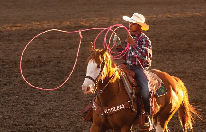 Rough and Wild