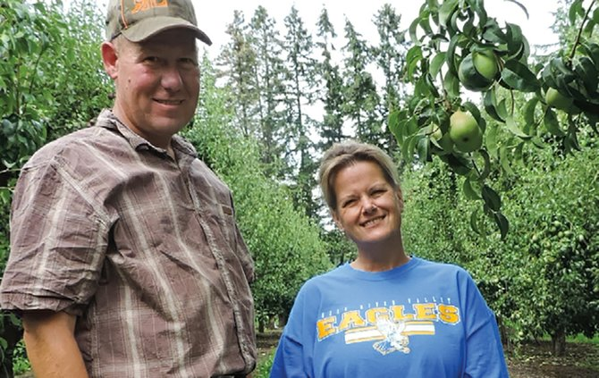 ODELL orchardist Dwight Moe, and his sister, Julie, check size and condition of sun-burnished Anjous that crews nurtured all year and are ready for harvest.