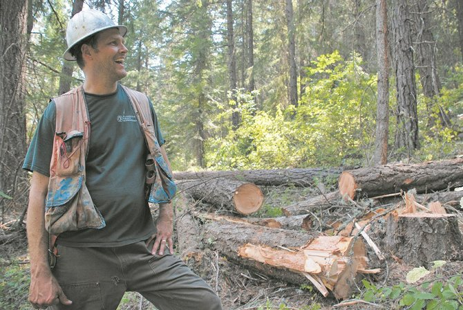 Jay McLaughlin, executive director of Mt. Adams Resource Stewards (MARS), was on hand with a chainsaw at a thinning operation to promote the growth of older trees at the Mill Pond Tract near Glenwood last week. MARS recently added 280 acres to its community forest effort by purchasing the Pine Flats Forest off of Trout Lake Highway for $800,000.