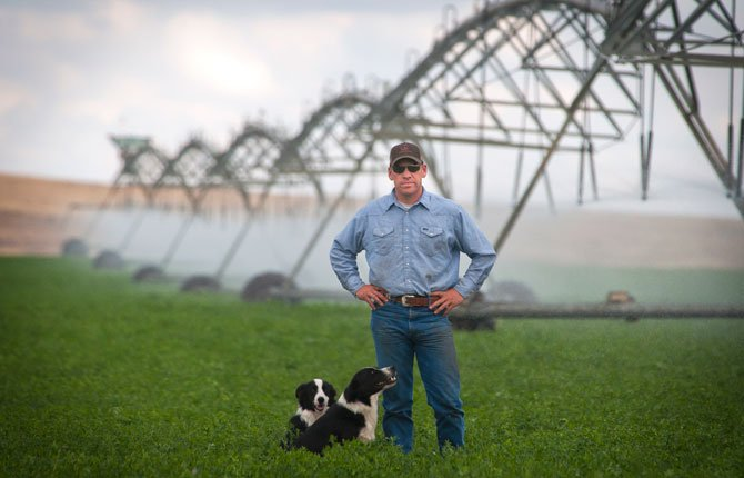 "A PIVOT irrigation system sweeps slowly across a field behind Maupin rancher Keith Nantz. The water he uses is drawn from the Juniper Flats Irrigation Ditch. Nantz, who serves on the Water Resources Committee for the Oregon Cattlemen's Association, says state water quality rules reflect a ""utopian idea that isn't workable."" Pictured with Nantz are his working dogs Poncho, front, and Rook."