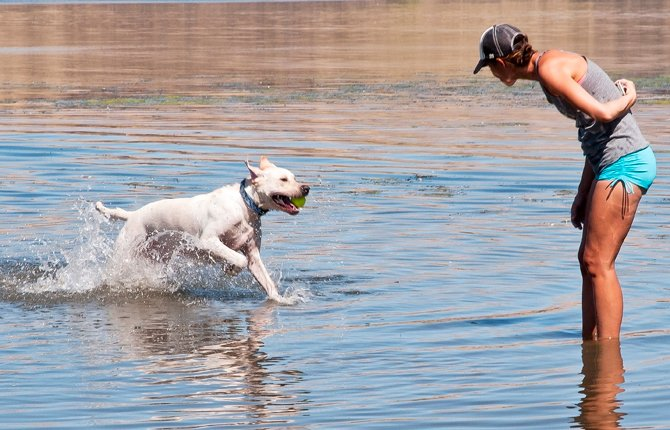 AMIE DIGENNARO hides her phone behind her back while her lab Mohz splashes in with a ball as she and her daughter Lyda celebrate National Dog Day and enjoy a break from the heat at Riverfront Park in The Dalles Aug. 27.