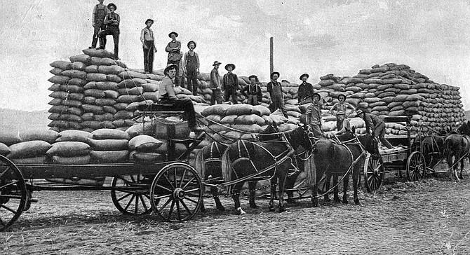 Wheat Blockade Grangeville Idaho