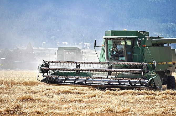 Harvesting in a field off Day Road in Grangeville on July 23.